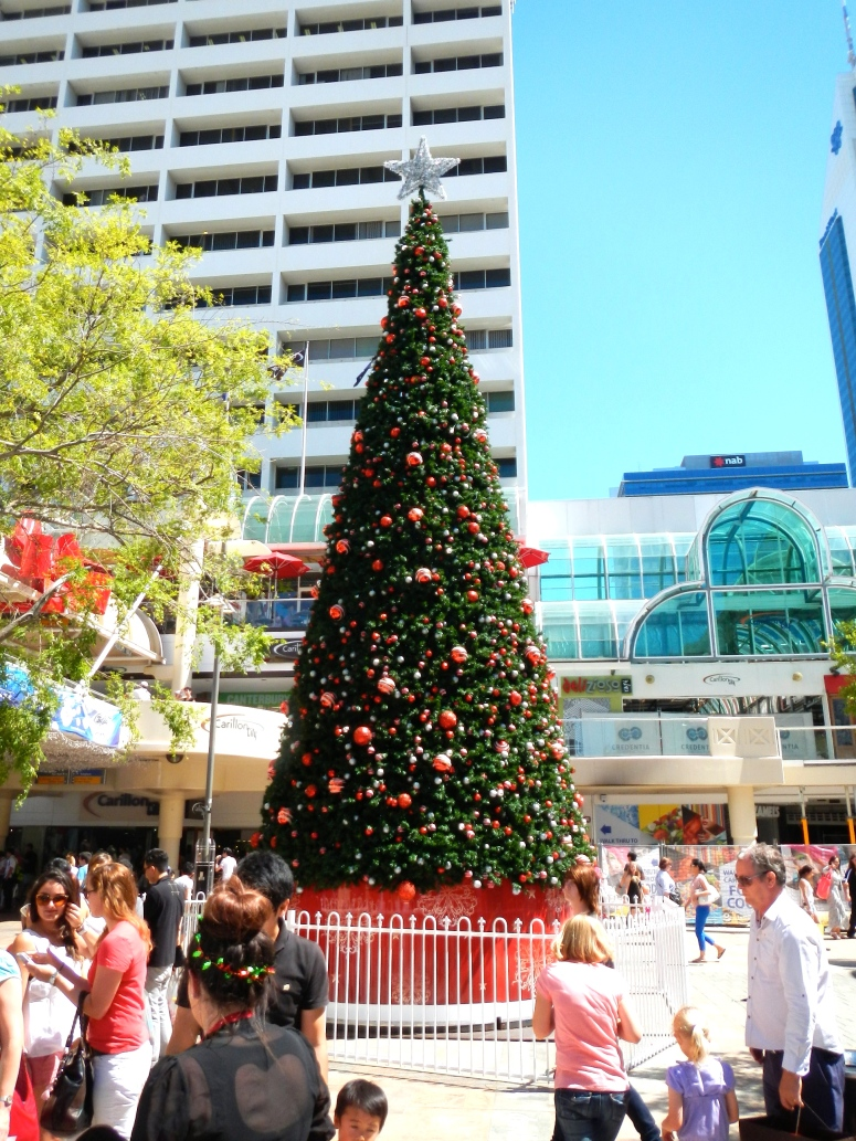 Christmas Tree Perth