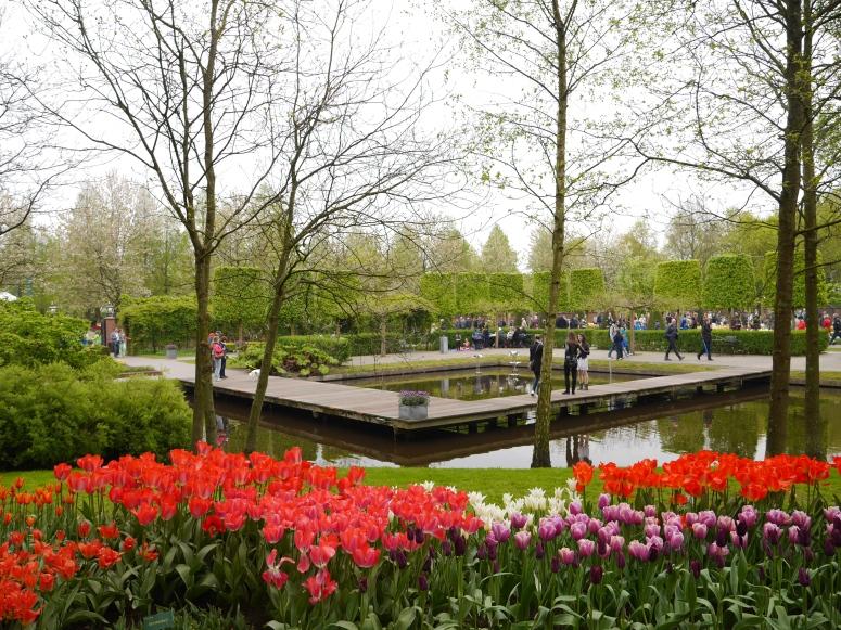 Keukenhof Spring Flowers 2