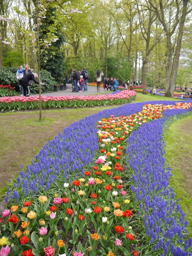 Keukenhof Spring Flowers 17