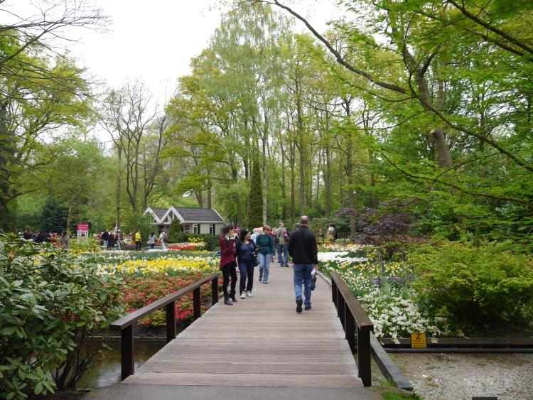 Keukenhof Spring Flowers 24