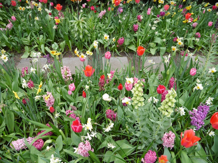 Netherlands Gardens