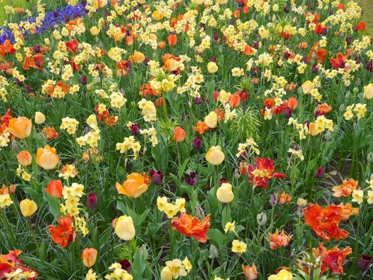 Secret Garden Netherlands