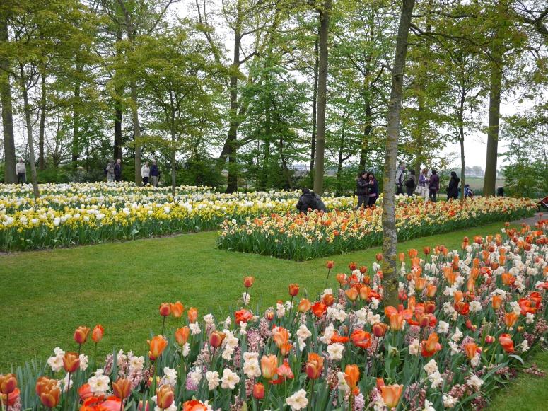 lisse Gardens